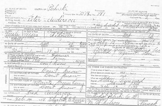illinois death certificate transcriptions