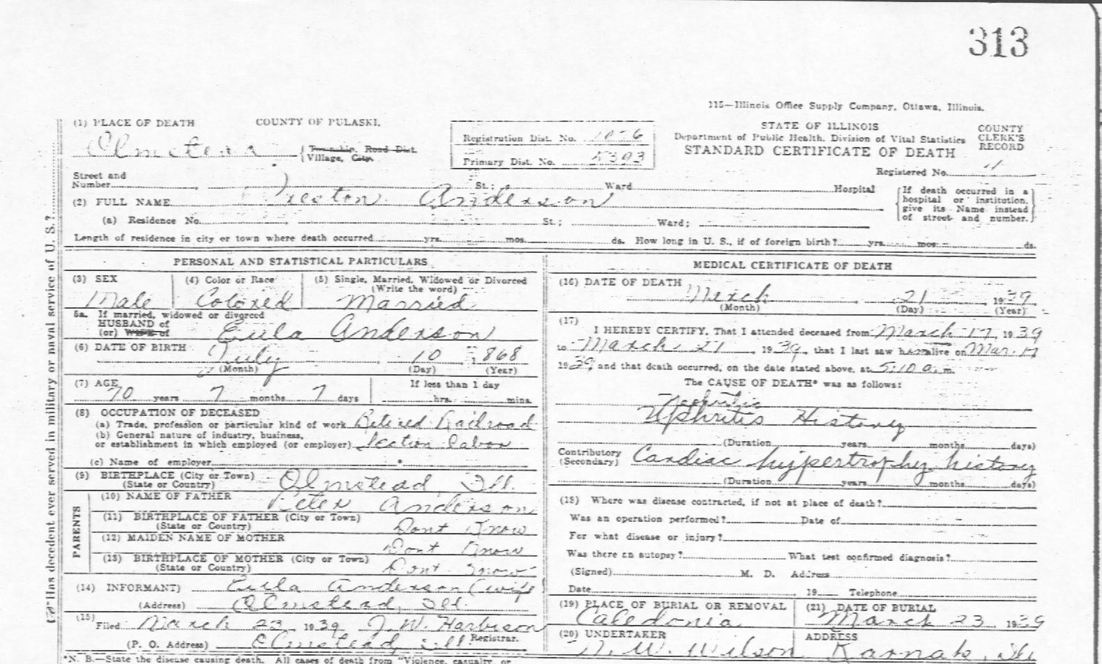 Illinois death certificate transcriptions preston anderson xflitez Images